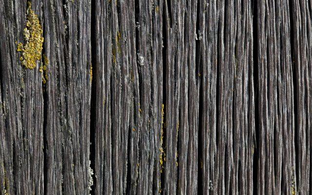 Aardbalans Freezephoto houtstructuur