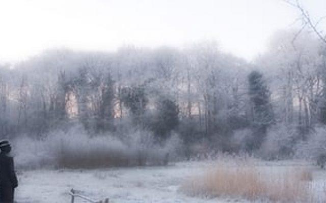 Thijsse standbeeld winter (foto: verKennemerland)